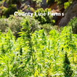County Line Farms