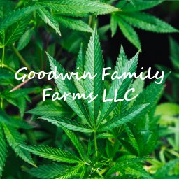 Goodwin Family Farms LLC