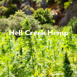 Hell Creek Hemp