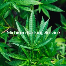 Michigan Bucking Service