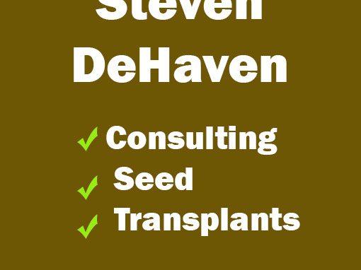 Steven Dehaven