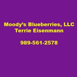 Moody's Blueberries