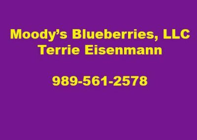 Moodies Blueberries