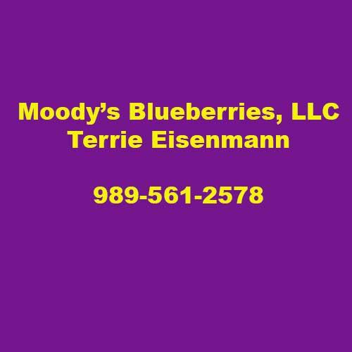 Moodies Blueberries
