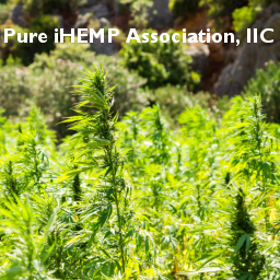 Pure iHEMP Association, llC