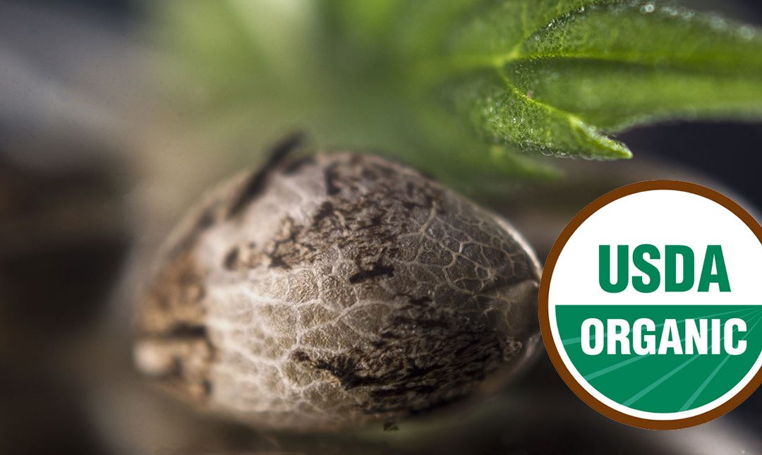 USDA Issues First Certification for Organic Hemp